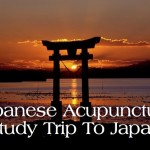 Japanese Acupuncture: Study Trip to Japan